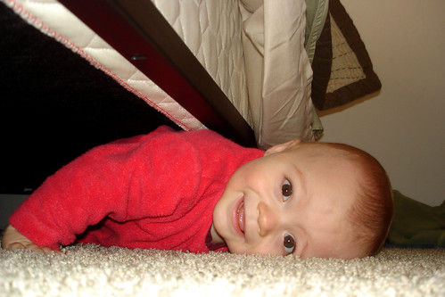 out from under the bed
