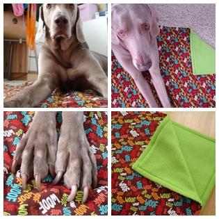 Casey's Blanket Mosaic