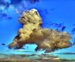 041307 animacloud (petervanallen) Tags: cloud dog animal cat sheep lion shape anima hdr naturesfinest 1exp anawesomeshot