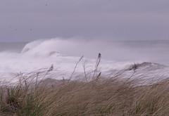 Ocean Spray (Sister72) Tags: ocean sea storm rain spring surf flood asburypark nj spray creativecommons monmouthcounty atlanticocean 2007 noreaster patriotsday april162007