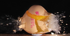 Egg Splat (Mark Watson (kalimistuk)) Tags: food make lumix frozen still mess raw shot egg fast panasonic smashed bits explode highspeed unseen exploded fz50 strobes froze shatterd anawesomeshot 22call eggsplat
