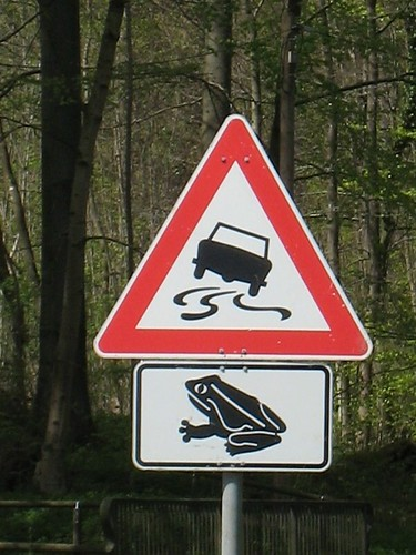 Slippery Frogs Sign