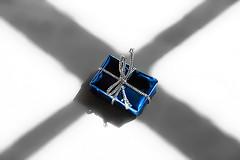 x marks the spot (Catherine Jamieson) Tags: xmarksthespot