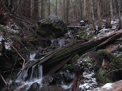 Tull Canyon Creek