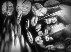 coffee5 (LowSpirit79) Tags: italy art coffee digital photoshop italia graphic scanner scan caff scannerart lanouvellerevolutionsurrealiste lowspirit
