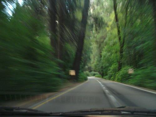 Photo: Driving in Yosemite by Joits
