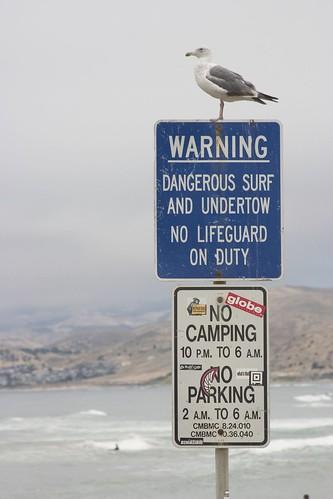 Опасные места для серфинга