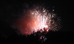 Fireworks at McIntire Park