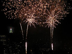 Firework Flowers (Linus Gelber) Tags: nyc newyork topv111 510fav fireworks utatahood fourthofjuly getty july4th july4 utatawishyouwerehere