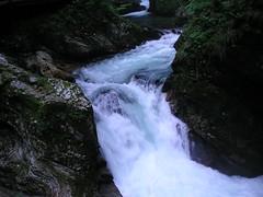Vintgar Gorge (anaru) Tags: 2004 slovenia bled gorge vintgar