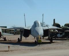 F14 Tomcat, Pima Air Museum (Puggles) Tags: f14 tomcat pima interceptor navy