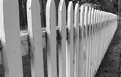 picket fence by sniffette