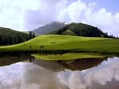 Paya Sar (NotMicroButSoft (Fallen in Love with Ghizar, GB)) Tags: paya lake kaghanvalley nwfp pakistan water nature reflection green saveme saveme2 deleteme deleteme2 d