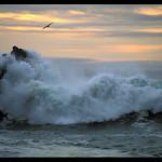 Turbulent Surf, Pacific Coast