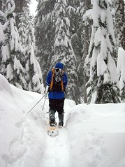Making trail (Mark Griffith) Tags: snow washington hiking hike snowshoeing snowlake alpental snoqualmiepass alpinelakeswilderness markgriffith