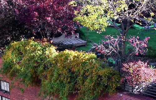 Terrace Roof Garden Img_1126a by Lanterna