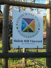 Russian River Valley Winegrowers Association s...