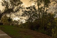 ravine les trois bassins (grondingilbert) Tags: nature nikon intense landscapes sunset reunionisland reunionnaisdumonde authentique ravine paysage974 d3100 f18