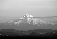 DSC_0010.NEF (amliv79) Tags: white black mt hood
