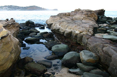 The rocks at Avalon Beach