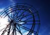 Oaks Vivid Wheel