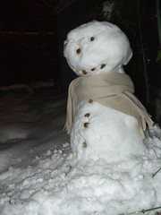 Mr Snowman (wrapped up warm)