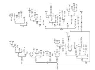 Phylogenetic tree of East Asian macro-haplogroup N
