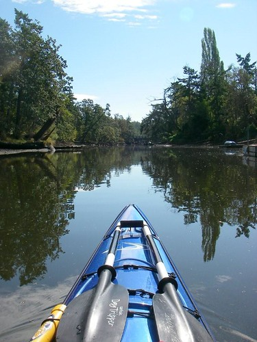 Into Colquitz Creek