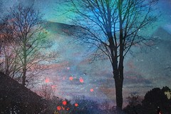 Dotty Dusk (jver64) Tags: trees sky silhouette clouds stars paint pentax dusk aurora pyramids leavings multiexposure optios5i