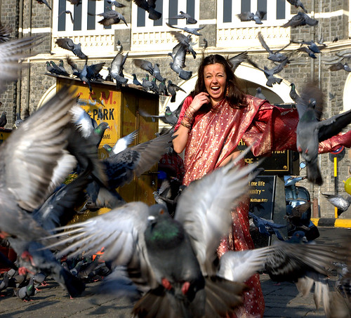 Attack of the Pigeons © The Telegraph UK