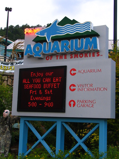 Gatlinburg's Aquarium and Seafood buffet.