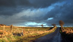 A Touch Of Evening Light (Scott Foy) Tags: road trees rain clouds canon fence scotland bravo gate fields thesource renfrewshire howwood magicdonkey rowbank outstandingshots rowbankreservoir 400d scottfoy superaplus aplusphoto