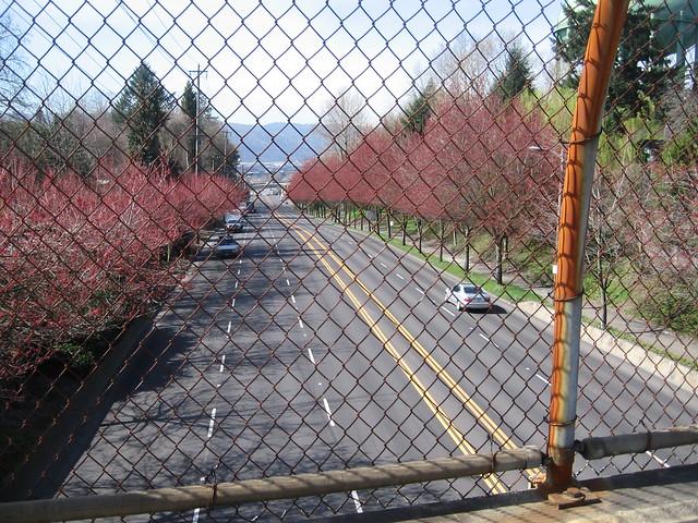 going_overpass2