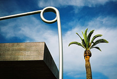 my last post for a while? (lomokev) Tags: sanfrancisco california goldengatepark brown abstract building tree deyoungmuseum architecture composition die young contax palmtree copper deyoung agfa ultra t2 agfaultra contaxt2 sanfrancisco2007 saftrypin file:name=070316contaxt276 rota:type=showall rota:type=composition