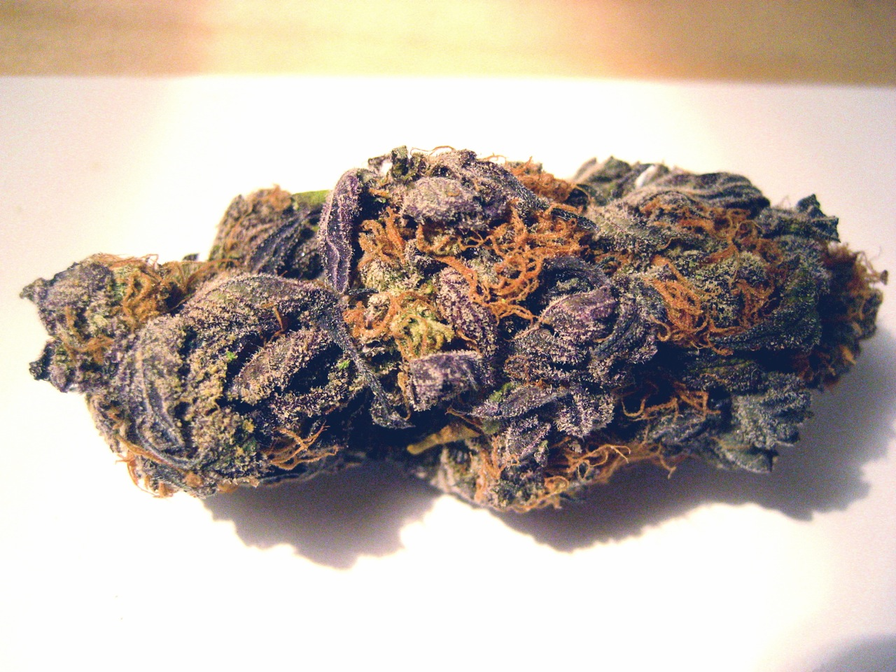 Purple marijuana nugs agree with