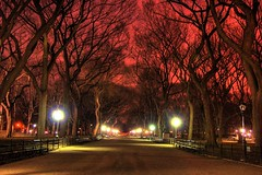 Central Park at Night (Karnevil) Tags: city nyc newyorkcity urban usa newyork bravo colorphotoaward