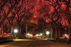 Central Park at Night (Karnevil) Tags: city nyc newyorkcity urban usa newyork bravo colorphotoaward
