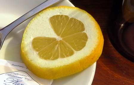 lemon_450.jpg