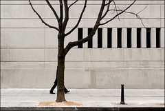 tree (Nils Jorgensen) Tags: music man colour tree london wall architecture concrete foot branch post leg piano streetphotography magritte monotone humour mysterious farside minimalism thewall drsuess timing ilmuro supershot exitpole nilsjorgensen noncoloursincolour montonecolour