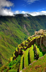 Cultivated lands at Machu Picchu