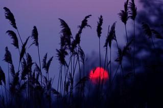 sunset 2 april