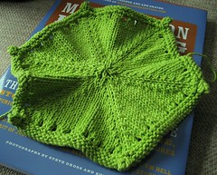 hexagonal dishcloth