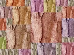 Pine Bark Grid 1