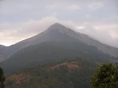 P1270174 (Maurya Rohit) Tags: travel india 2007 munnar