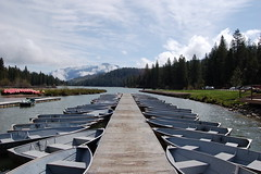 Hume Lake Docks