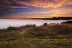 Road to the fog (Sergio Nevado) Tags: alava amanecer araba camino cielo clouds euskadi gasteiz landscape monte naturaleza nature niebla nubes olarizu paisvasco paisaje road sky sunrise vitoria
