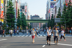(Omnila) Tags: japan outdoors outdoor scenery street people akihabara cityscape city architecture crossing anime subculture