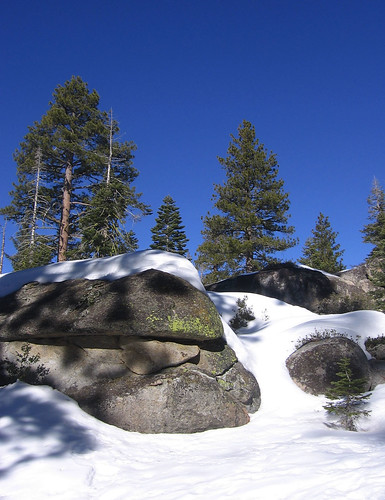 Rocks, trees, snow, sky
