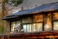 What a creepy house! (* Yumi *) Tags: hdr 深大寺 神代植物園 travelerphotos jindaibotanicalgarden