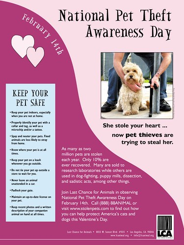 LCA - National Pet Theft Awareness Day, 2001 (Poster)